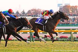 Breeders Cup Charts 2013 Northern Dancer Blog Japan Cup 2013