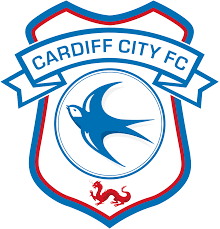 Image result for CARDIFF logo