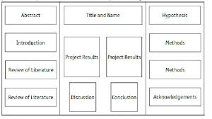 Science Project Board Layout Serpto Carpentersdaughter Co