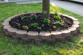 landscaping ideas around trees home