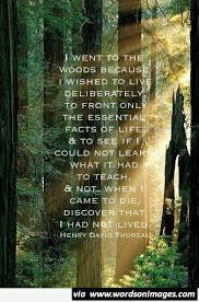 Awesome Woods Quote Short Quotes Collection Of Inspiring Quotes Delectable Woods Quotes