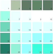 Duron Paint Color Karosserienetzwerk Co