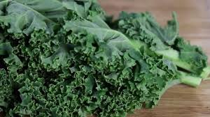 Hasil gambar untuk kale