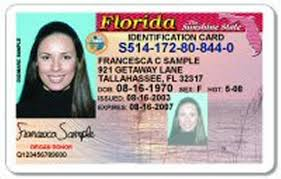 Herald Renewals Records License Delays Balky Checks Florida's Driver's Sometimes Database Miami