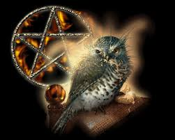 Image result for WICCA gif