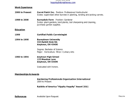 Resume Templates Incredibleob Template First Download Free For