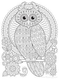 perched owl coloring page by thaneeya