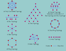 Network Topologies King Of Networking