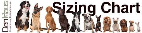 Terrier Size Chart Sizing Chart Denhaus