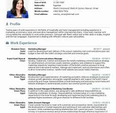 Sample Resume For Marketing Job Staggeringsume Example Marketing Template Brilliant Ideas Of 36