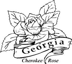 Small Picture Coloring Pages Of Magnolia Flowers Coloring Pages