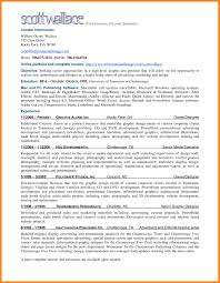 Resume Professional Summary business analyst professional summary Tolgjcmanagementco 62