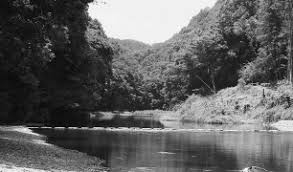 遊 来 夏の嵐山渓谷