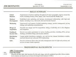 resume summary on resume example example of summary in resume