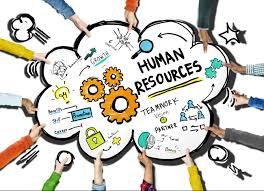 human resources kaneland