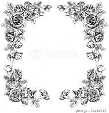 モノクロ フレーム 花 バラのイラスト素材 Pixta