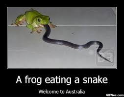 Related Pictures Memes Welcome To Australia | Free Quotes via Relatably.com