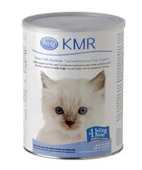 the formula should be fed to your kitten according to the package instructions