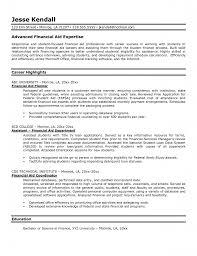 Financial Services Resume Financial Advisor Resume Order Essay Online