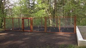Image of: Hog Wire Fence Garden