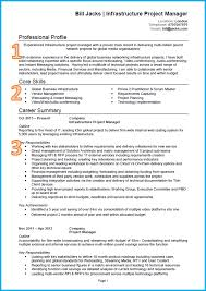 Form Template Professional Curriculum Vitae Format Indonesia