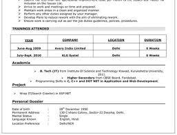 Professional Resume Writers Hyderabad Resume Writing Examples Illinois resume  writing services writers in the united naukri Naukri FastForward