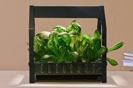 ikea indoor gardening kit 1