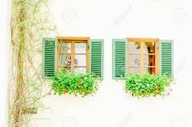 Zwei Braune Fenster Mit Grünen Fensterläden Und Blumen In Der