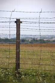 barbed wire fence concentration camp. File:Lublin - Majdanek 005 Barbed Wire.jpg Wire Fence Concentration Camp A