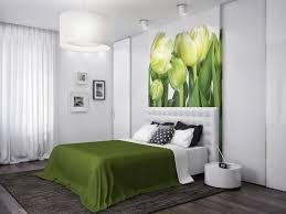 Bedroom : Green And Grey Bedroom Serene Coral Combinations Mint ...