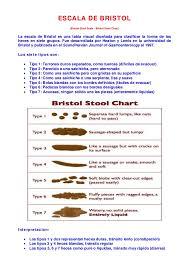 Bristol Stool Chart Pdf All Categories Rogoo