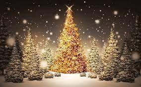 56+] Christmas Tree Desktop Wallpaper ...