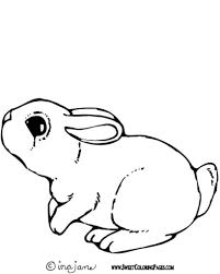 Small Picture The Incredible Cute Bunny Coloring Pages intended to Encourage in