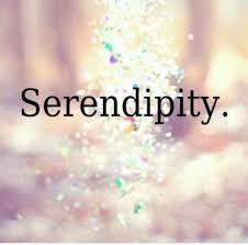 Hasil gambar untuk Serendipity