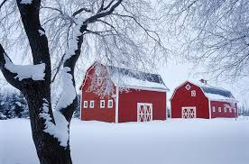 Image result for barns in winter