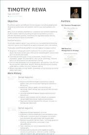 Dental Hygienist Resumes Custom Dental Hygienist Resume Template Chaseeventsco