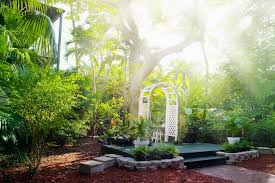 Backyard Landscape Designs Custom South Florida Plant Guide How To Achieve Beautiful Low Maintenance