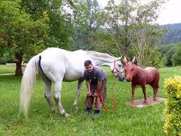 Enrique Richter, 'zapatero' de caballos - Deia
