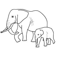 Leuk Voor Kids Olifanten Kleurplaten