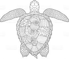 Small Picture Animal Turtle Coloring Page Coloring Coloring Pages