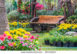 garden flowers. Wood Chair In The Flowers Garden./ Garden. Garden