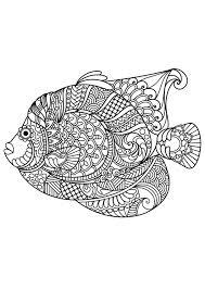 Free Adult Coloring Pages Pdf Image Ideas Animal Seashells Sea Life