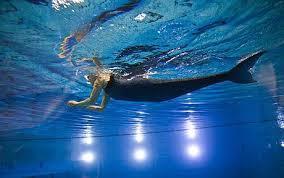 Как стать русалкой в реальной жизни с силой без полнолуния Как стать русалкой