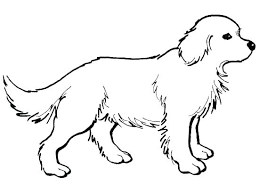 dog coloring book pictures printable children for s anatomy pdf dog coloring book