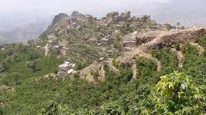 Ecco perché il caffè avrebbe potuto salvare lo Yemen che ora è in guerra