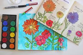 how to draw garden flowers art project