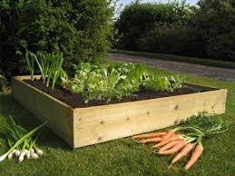 raised bed vegetable garden for beginners offer nan 69 50 rrp productwas