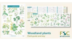 Fsc Fold Out Id Chart Woodland Plants Identification Chart