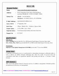 Cv Writing Examples Personal Profile Personalrofile Templaterofessional Example Resume Sample