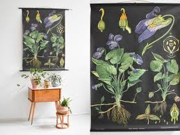 Botanical Print Botanical Posters Antique Botanical Prints Botanical Wall Chart Black Poster Educational Poster Pull Down Chart